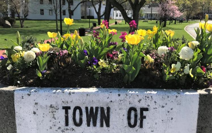 town common - spring look